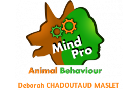 MindPro Animal Behaviour